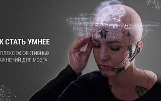 Упражнения для развития мозга и улучшения памяти: тренировка мозга, задачи для интеллекта
