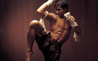 Питание боксера: все правила питания при занятиях боксом