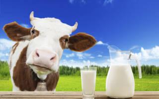 Калорийность и пищевой состав молока коровьего