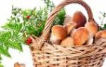 Яичница калорийность на 100 г бжу состав полезные свойства