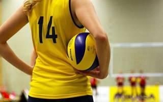 Как научиться играть в волейбол, правила успешного обучения волейболу