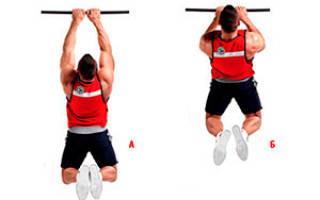Какие мышцы работают при подтягивании: узким хватом, широким хватом, на одной руке