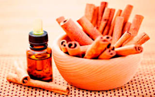 Корица с медом против целлюлита – рецепты