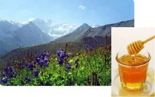 Полезные свойства горного меда, какой вкус у горного меда, польза и вред горного меда