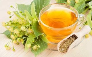 Чем полезны цветки липы, как собирать липовый цвет, как заваривать чай с липой, противопоказания для употребления липового цвета
