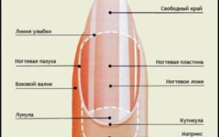 Грубая или сухая кожа вокруг ногтей: почему сохнет, как смягчить