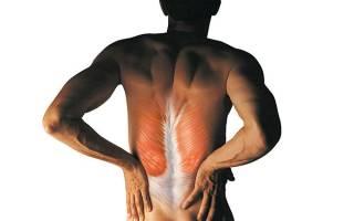 Мышечные зажимы и блоки – как снять нервно мышечное напряжение