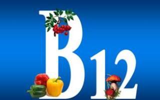 Вегетарианство и витамин B12: где содержится витамин B12