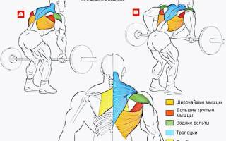Тяга штанги в наклоне, фото и видео техники выполнения упражнения