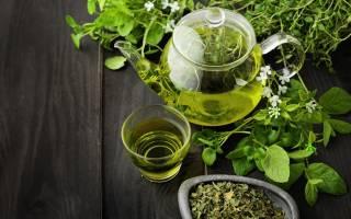 Чай с мелиссой – полезные свойства, противопоказания, как правильно заваривать чай с травой