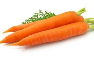 Морковные диеты: диета на моркови и яблоках, диета из моркови и капусты, диеты с морковью и грейпфрутом
