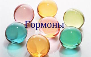Когда и зачем сдавать анализ крови на гормоны: расшифровка результатов и норма на гормоны щитовидной железы – таблица