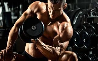 Сколько делать подходов cколько упражнений выполнять для одной группы мышц сколько делать повторов составляем эффективную тренировочную программу