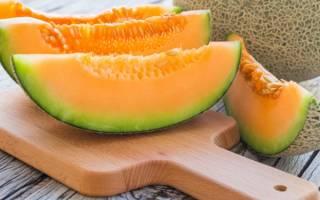 Дыня для похудения – отзывы, польза дыни для похудения