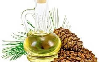 Чем полезно масло кедровых орешков, как получают масло из кедровых орехов, как получить кедровое масло в домашних условиях