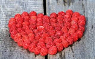 Диета при заболеваниях сердечно-сосудистой системы, меню при гипертонии и сердечной недостаточности