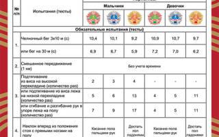 Нормы ГТО для школьников (2018), какие существуют нормативы для сдачи ГТО для мальчиков и девочек в современной России, как и где сдать ГТО