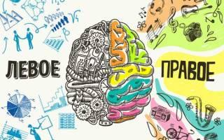 Упражнения на развитие обоих полушарий головного мозга