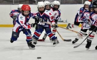 Собираетесь отдать ребенка в спортивную секцию, но не знаете какую выбрать О популярных видах спорта для детей, их преимуществах и недостатках