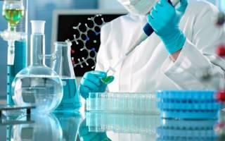 Иммуноферментный анализ крови: расшифровка, зачем делают, норма и цена