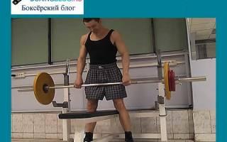 Комплексы упражнений для боксеров на физику и развитие силы удара