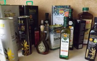 Полезные свойства оливкового масла, как выбрать и хранить оливковое масло