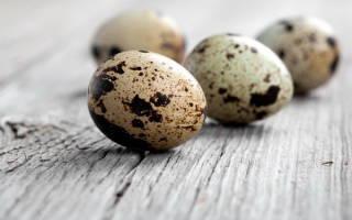 Польза перепелиных яиц при аллергии детям и взрослым