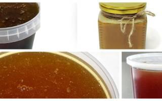 В чем польза чернокленового меда, лечебные свойства чернокленового меда, от чего помогает чернокленовый мед