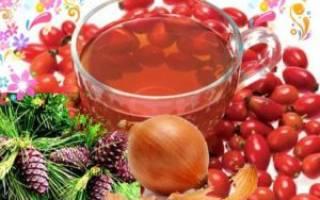 Плоды шиповника, луковая шелуха и хвоя – польза для организма, рецепты, как принимать