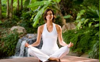 Йога Айенгара – асаны для начинающих, йога по методу Айенгара в картинках и видео