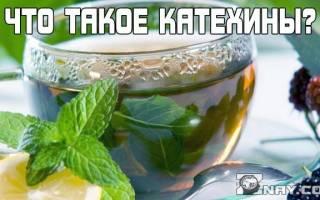 Катехины – польза для похудения и мозга, влияние катехинов на организм