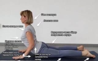 Базовые позы йоги: Ардха Бхуджангасана (Поза Сфинкса)