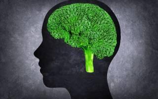 Какие продукты улучшают память, вредные продукты для памяти