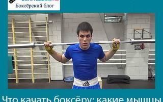Какие мышцы развиваются при занятиях боксом