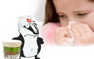 Барсучий жир от кашля и бронхита: лечебные свойства, способ применения, барсучий жир от кашля беременным и грудничкам