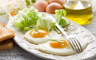 Белковые завтраки: польза и простые рецепты
