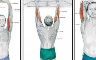 Растяжка бицепса руки после тренировки, лучшие упражнения на растяжку бицепса