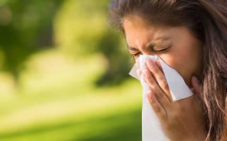 Аллергия на цветение: симптомы, профилактика и лечение