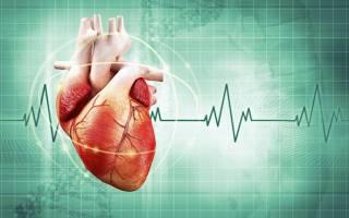Колющая боль в области сердца – причины, диагностика и что делать