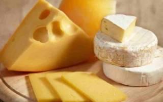 Разгрузочный день на сыре для похудения, польза и варианты сырного разгрузочного дня