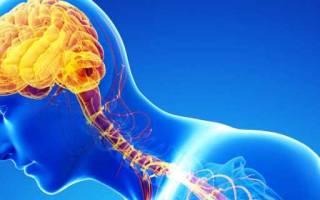 Продукты питания для улучшения деятельности мозга, диета для мозга