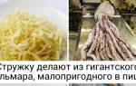 Рецепты из морепродуктов, как выбрать морепродукты, польза морепродуктов и способы их приготовления