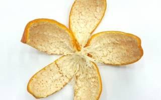 Полезные свойства цедры апельсина – калорийность и состав
