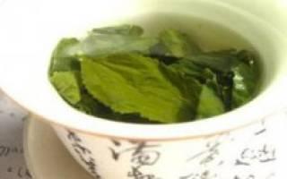 Катехины в черном и зеленом чае, чем полезен чайный катехин
