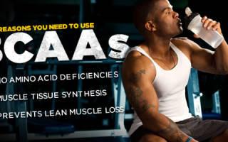 BCAA – польза и вред для организма, как принимать BCAA и в каком количестве