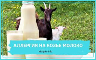 Может ли козье молоко вызывать аллергию