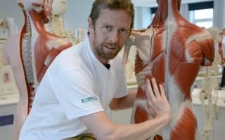 Растяжение мышц спины, симптомы и лечение растяжения мышц спины