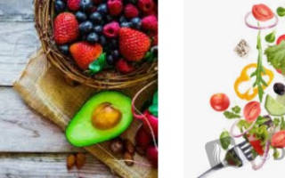 Что такое метаболизм веществ в организме и как его ускорить