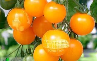 Какая разница между томатом и помидором