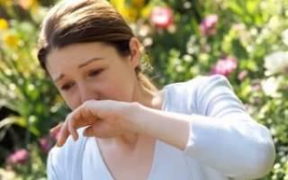 Аллергия на цветение при беременности: почему возникает и чем лечить